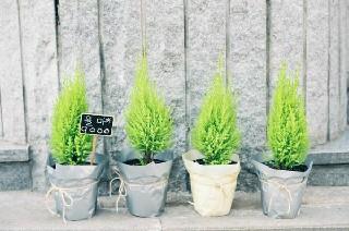 2019贵阳幼儿师范高等专科学校的招生要求