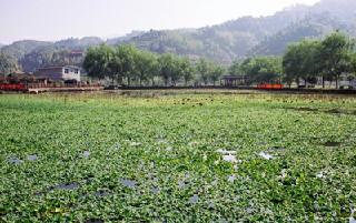 四川省阆中师范学校的收费标准_入学注意什么